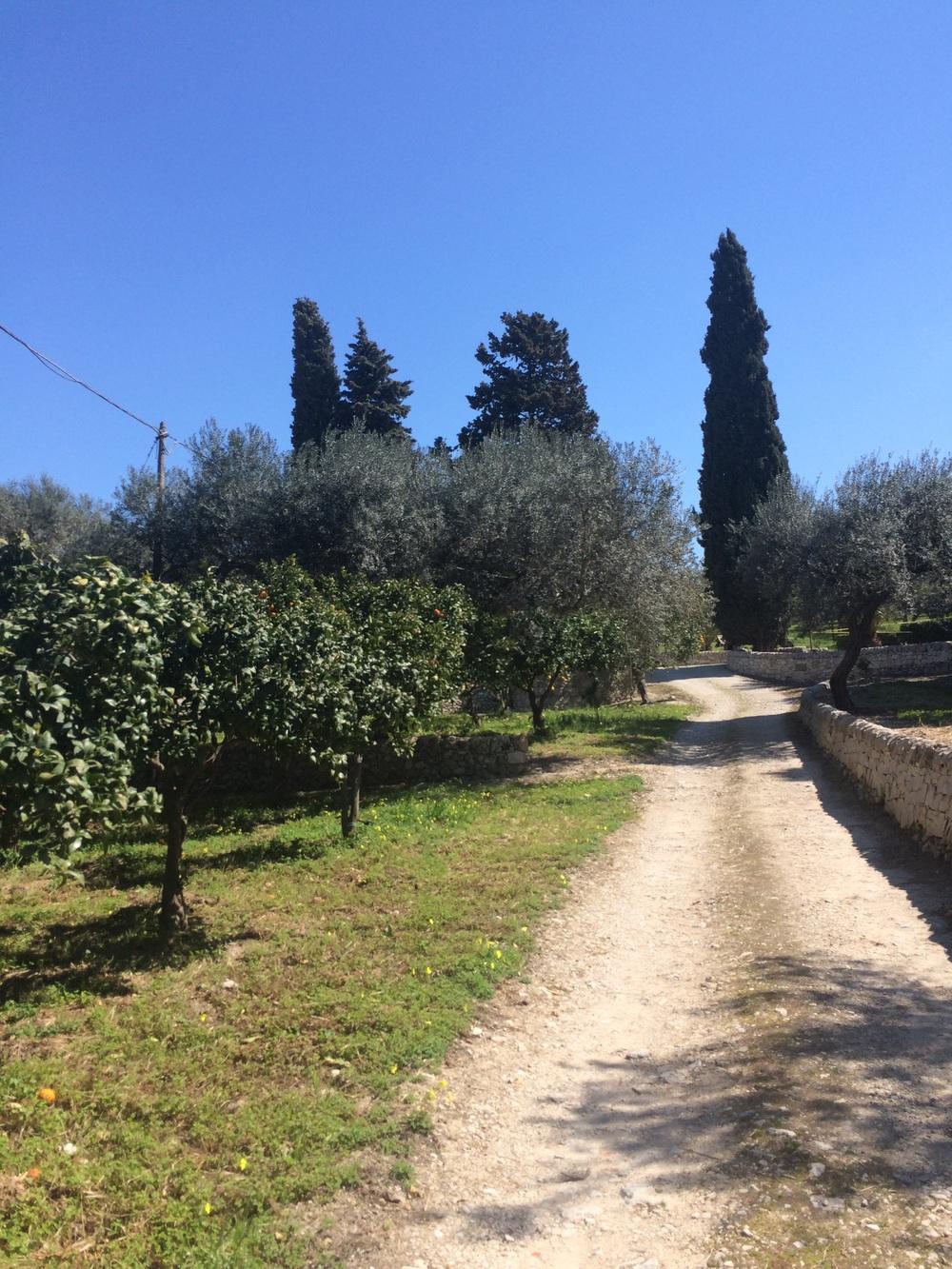Tenuta Pianogrillo, Chiaramonte Gulfi, Sicilia