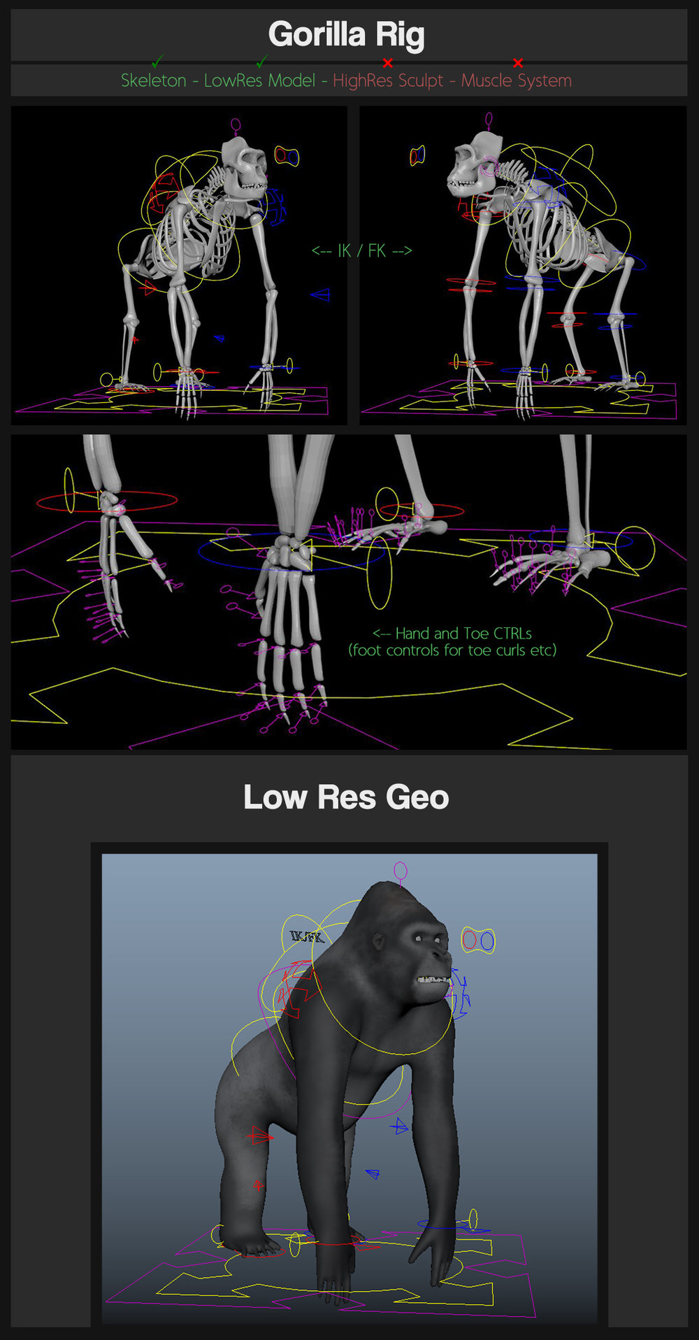 JT Gorilla   This is my first rig i made whilst working, it's a semi-realistic gorilla rig for use in Maya. It has all the nessecary controls to create soem believeable animation!    Happy Animating!