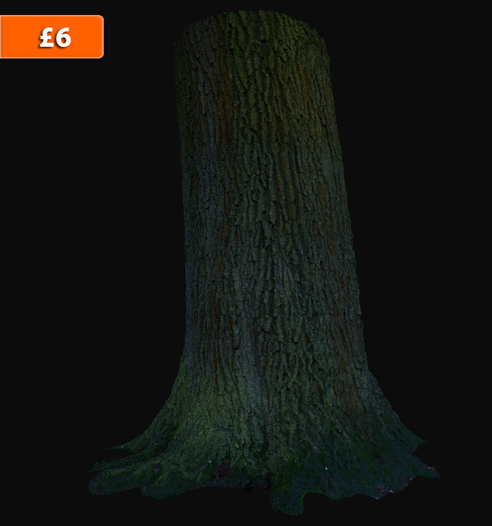 Full 360 degree - High Resolution Tree Scan!    1 x Scan Res Model,        1 x High Res Model,        1 x Low Res Model     (all models as .obj format)     Displacement map & COL map included.