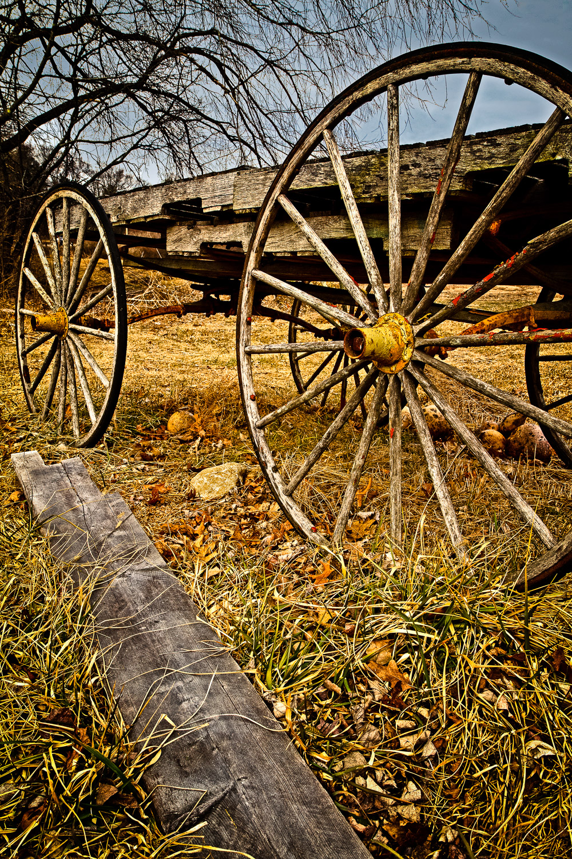 Pumpkin Wagon Lincoln, Massachusetts