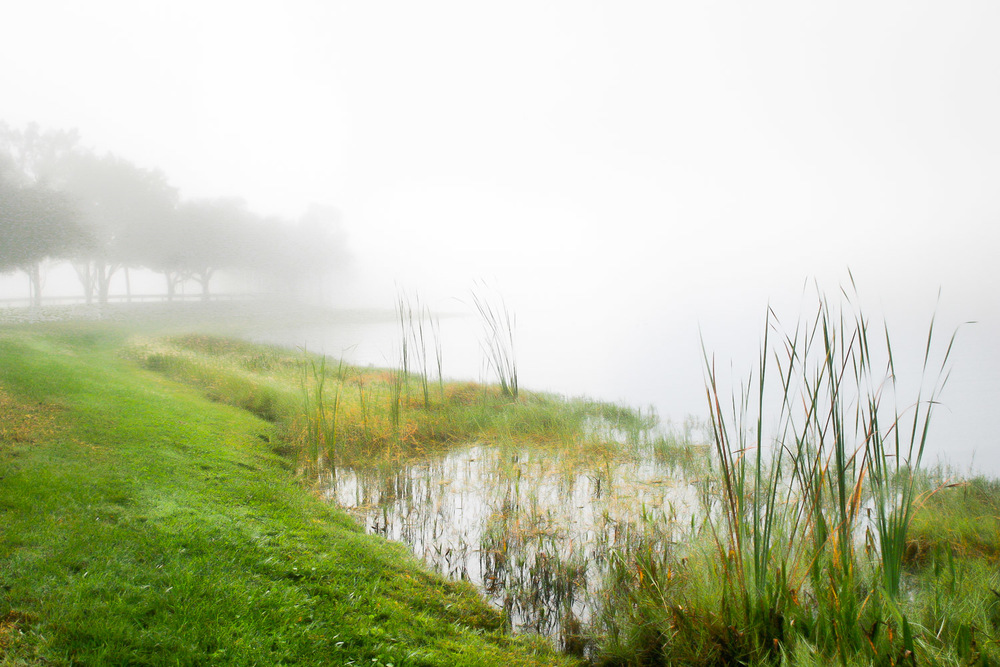Pond In Fog Kissimmee  , Florida