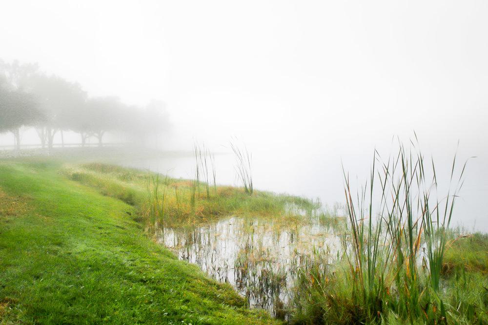 Pond In Fog Orlando, Florida