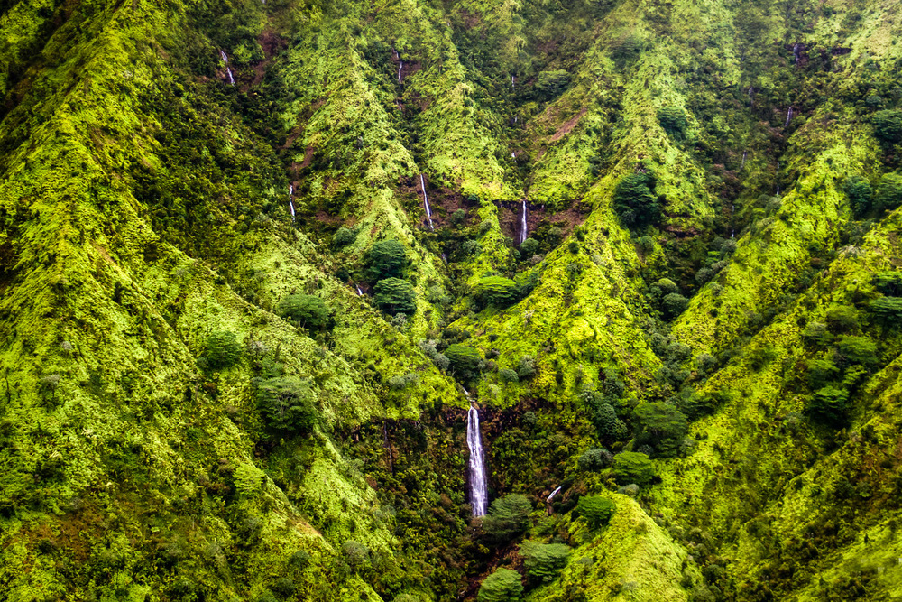 Waterfalls Of Mt. Waialeale Kauai, Hawaii