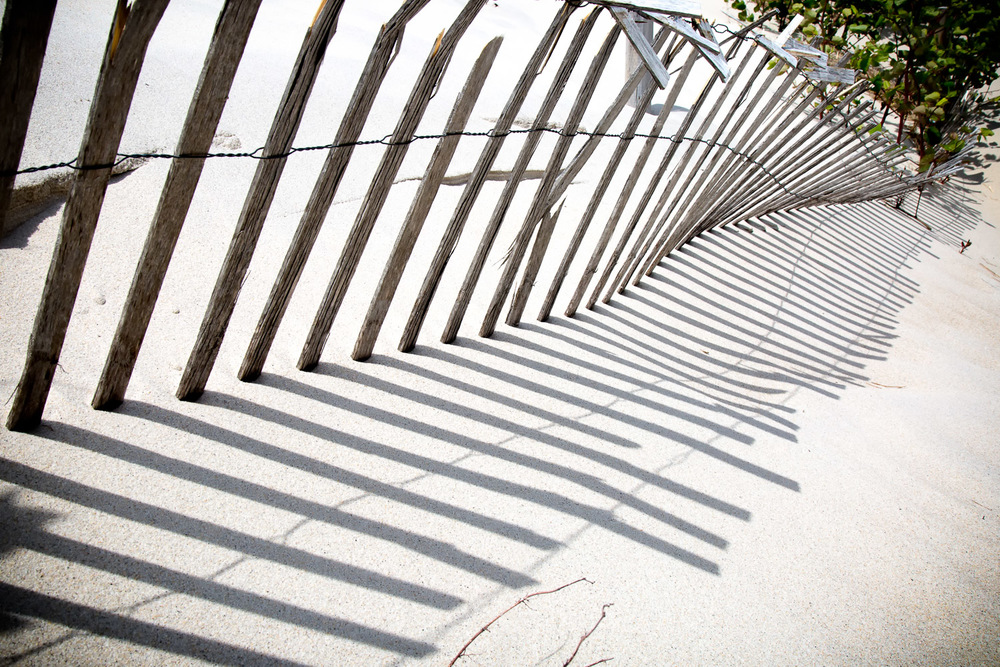 Weathered-Sand-Fence-And-Shadow.jpg