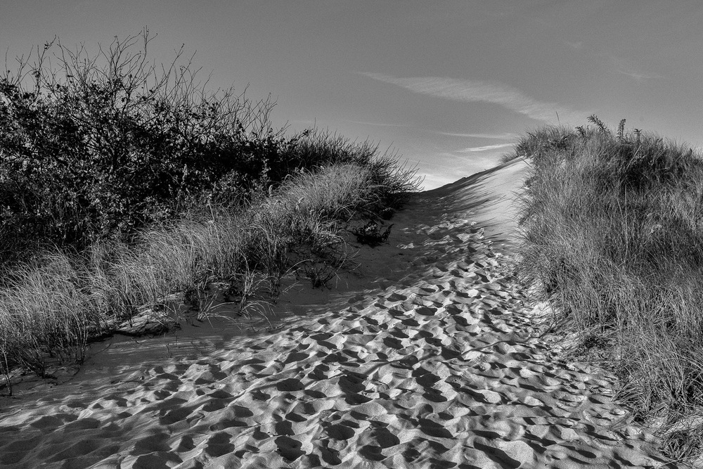 San-Dune-Hill-With-Footprints-BW.jpg