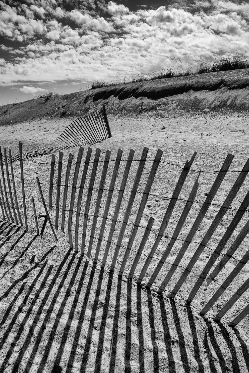 Dune Fence Shadows Orleans, Massachusetts