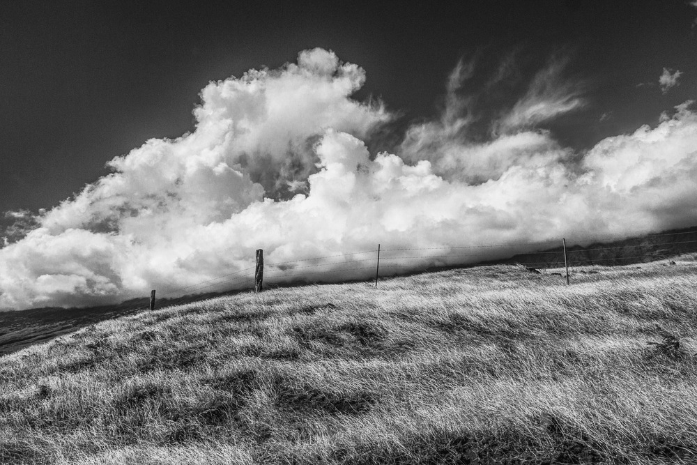 Clouds-Over-Field-On-Road-To-Hana-BW.jpg
