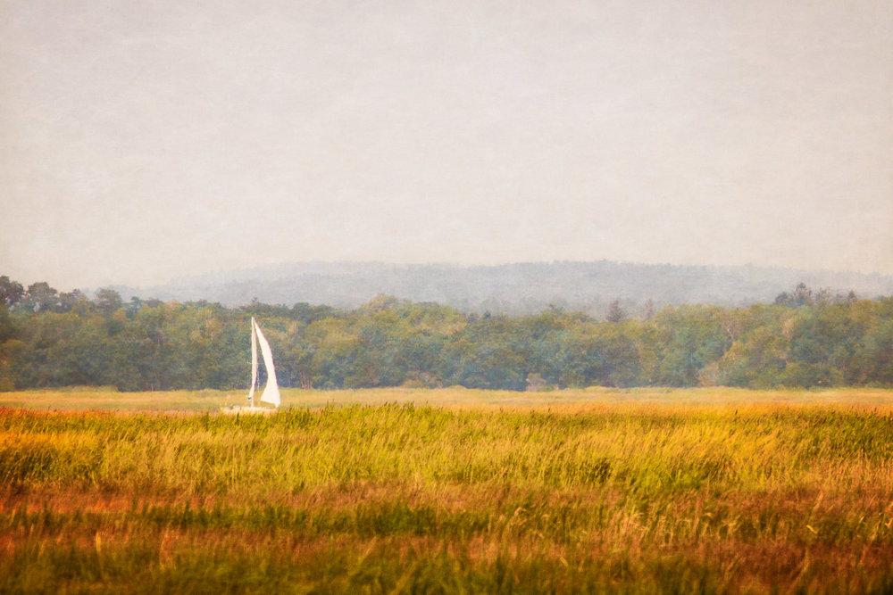 Sail On The Marsh Plum Island, Massachusetts