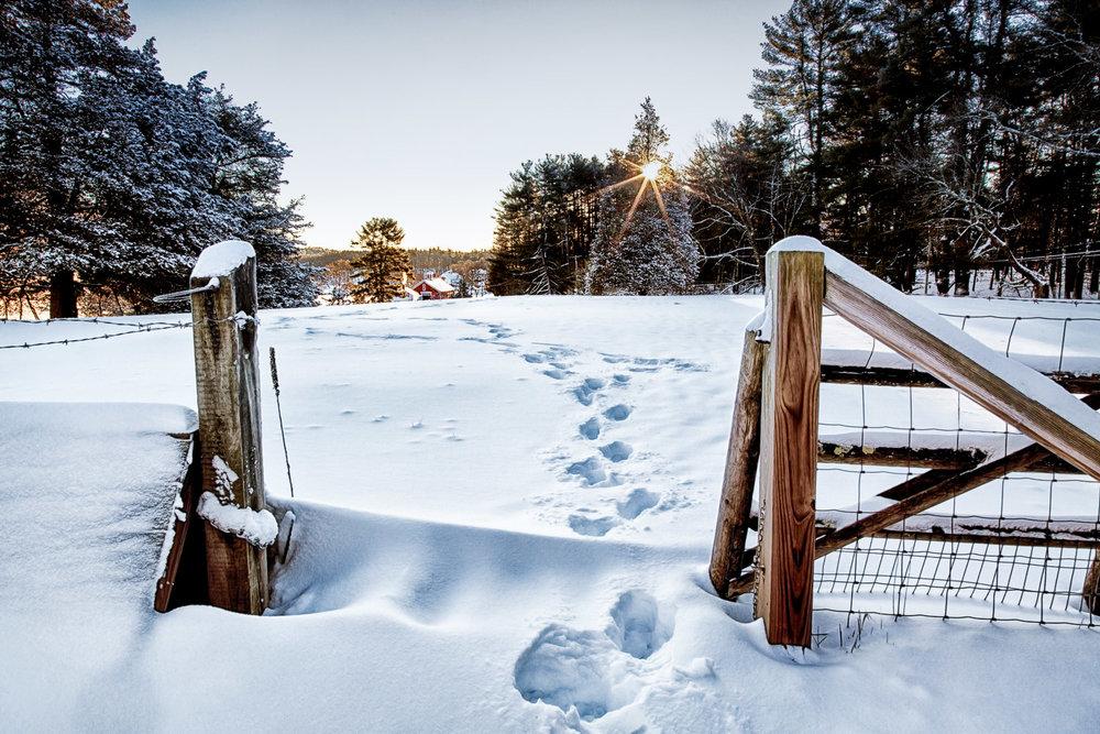 New Snow Sherborn, Massachusetts