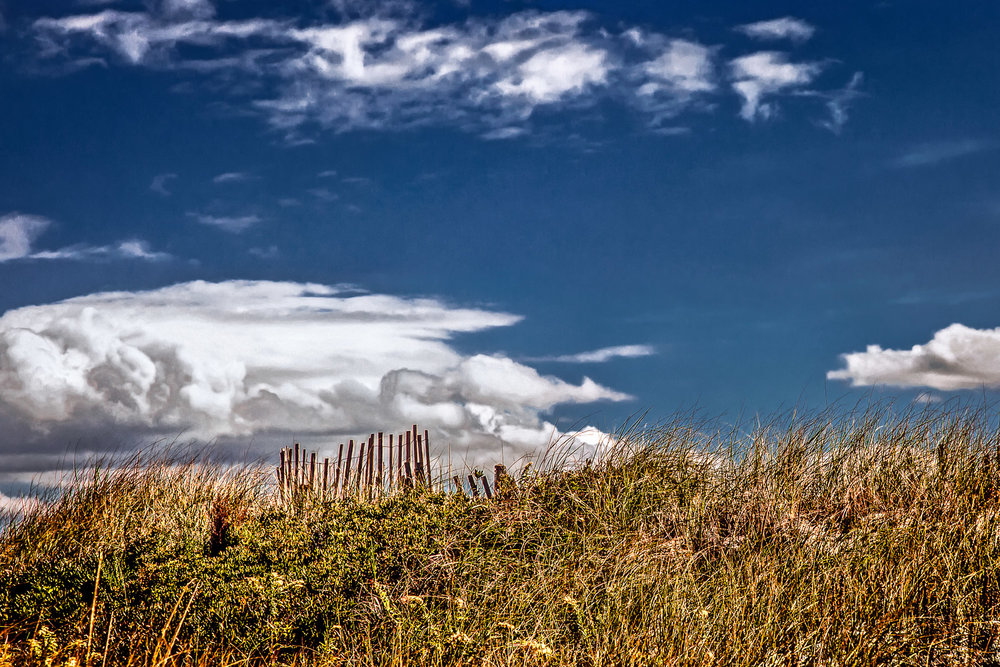 Sand Fence Sandwich, Massachusetts
