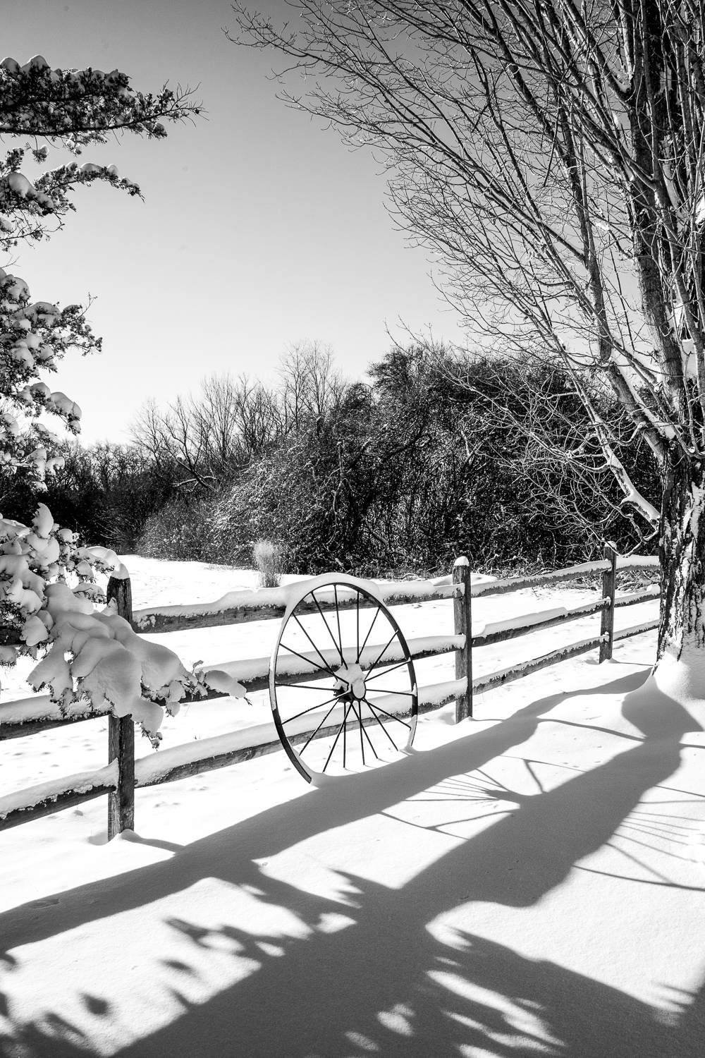 Wagon-Wheel-In-Snow-Broadmor-BW.jpg