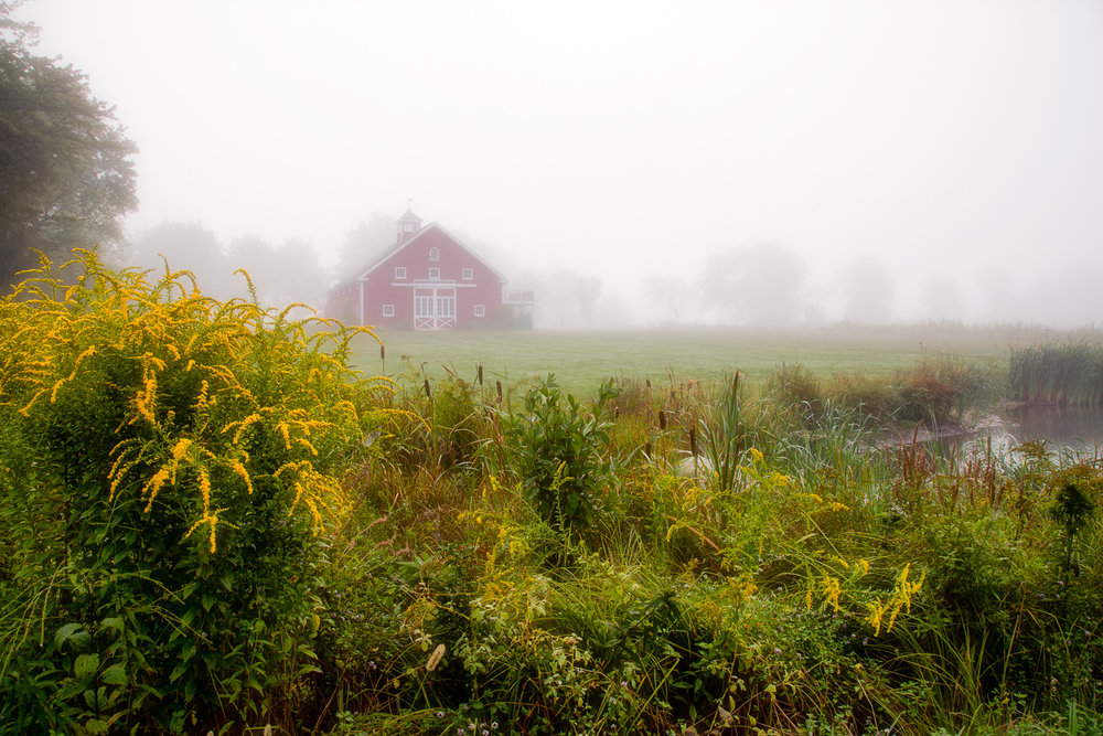 Red Barn In Fog Sherborn, Massachusetts