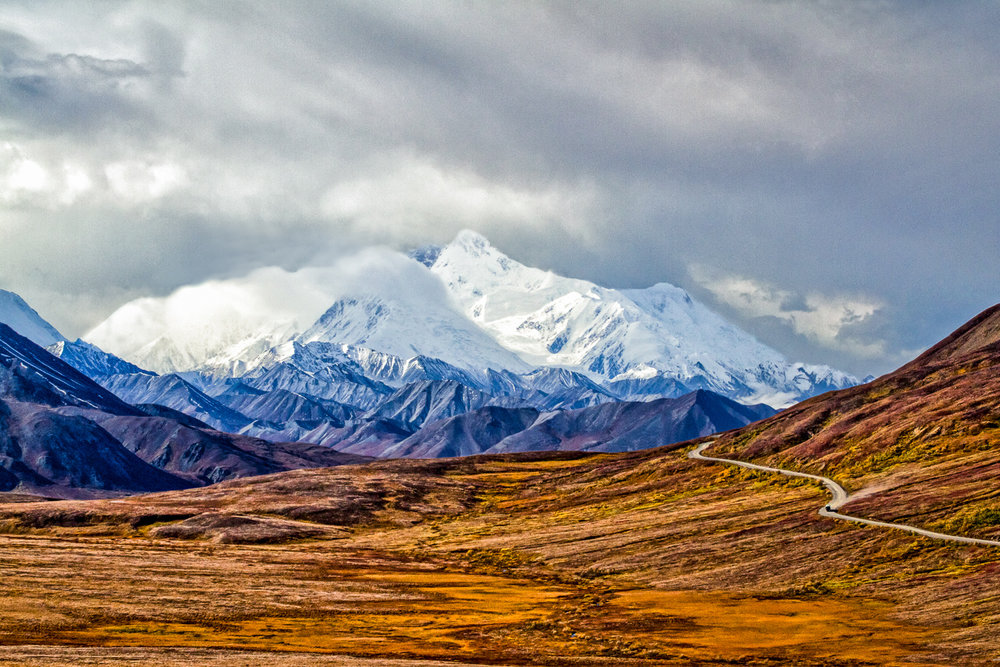 Road To The Wilderness Denali National Park, Alaska