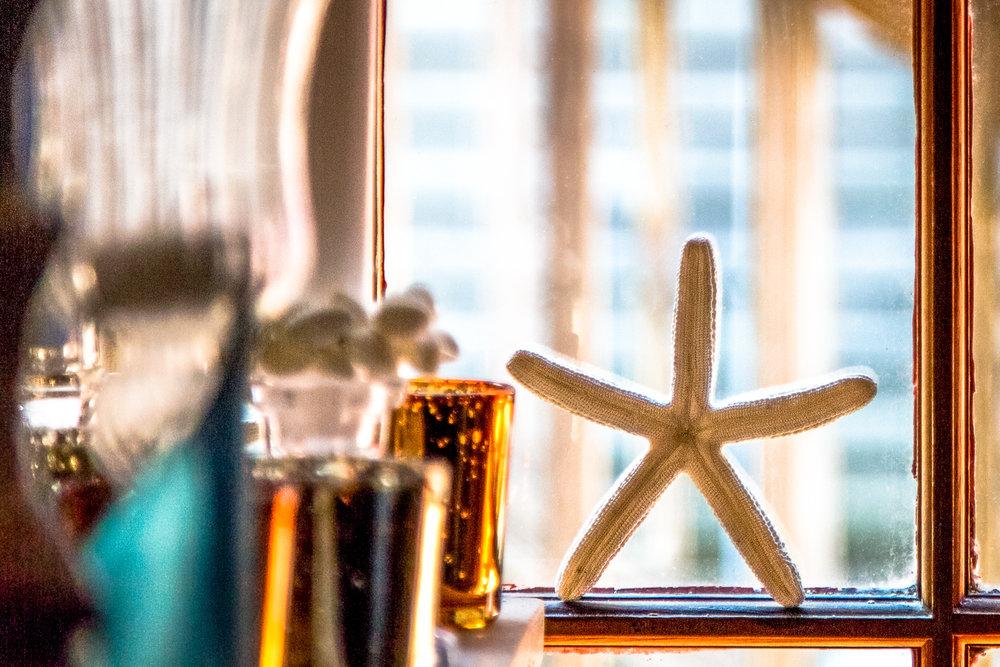Starfish In The Window Freeport, Maine