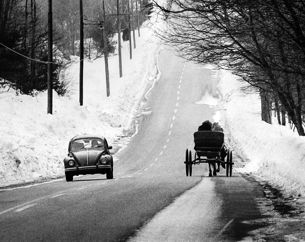 VW-Bug-And-Horse-And-Buggy-On-Road-BW-USEtif.jpg