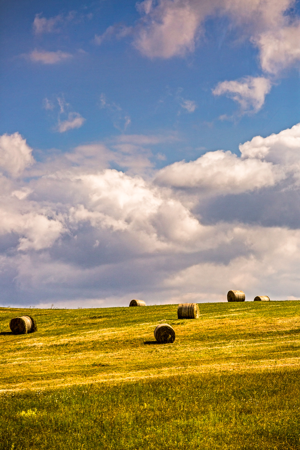 Field-Of-Hay-Bales-From-Route-To-Prague-2-4.jpg