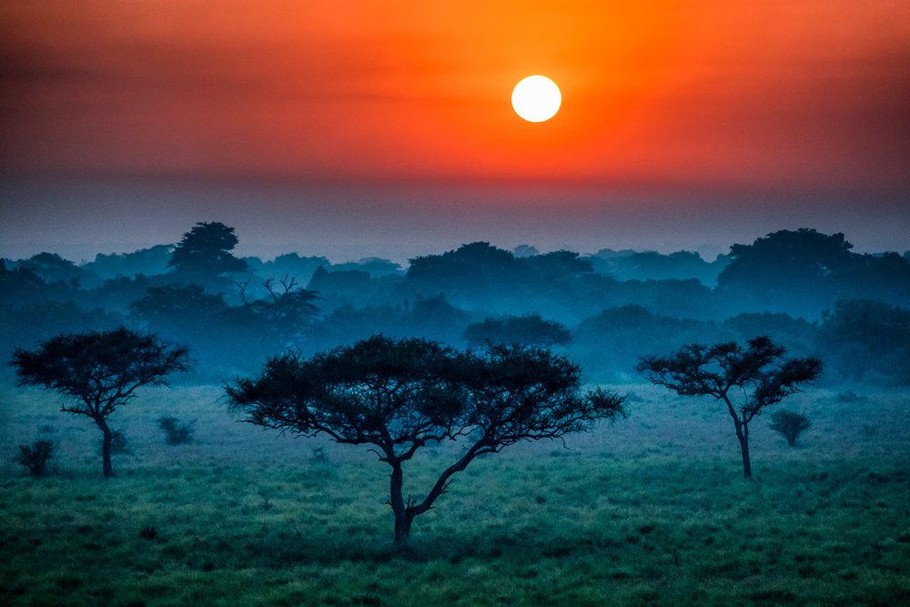 Serengeti Sunrise Tanzania, Africa