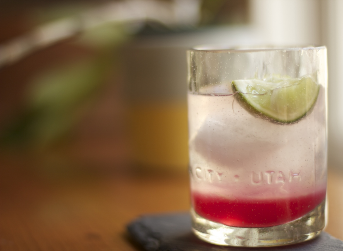 rhubarb ginger gin gimlet//wanderaven