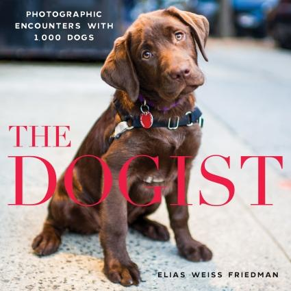 the dogist (review)//wanderaven
