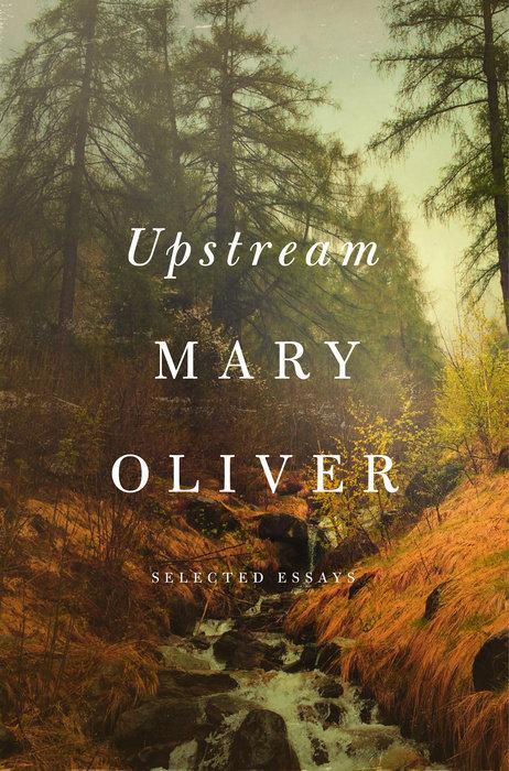 upstream (Review)//wanderaven