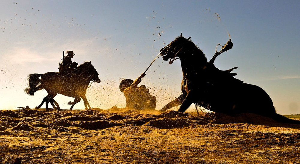 Australia's Mighty Warhorses (National Geographic)