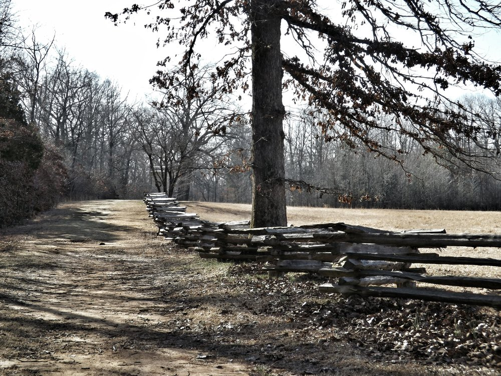 Sunken Road, Shiloh National Battlefield (David Whelan/Wikimedia)