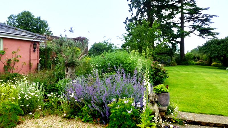 The Coach House Garden