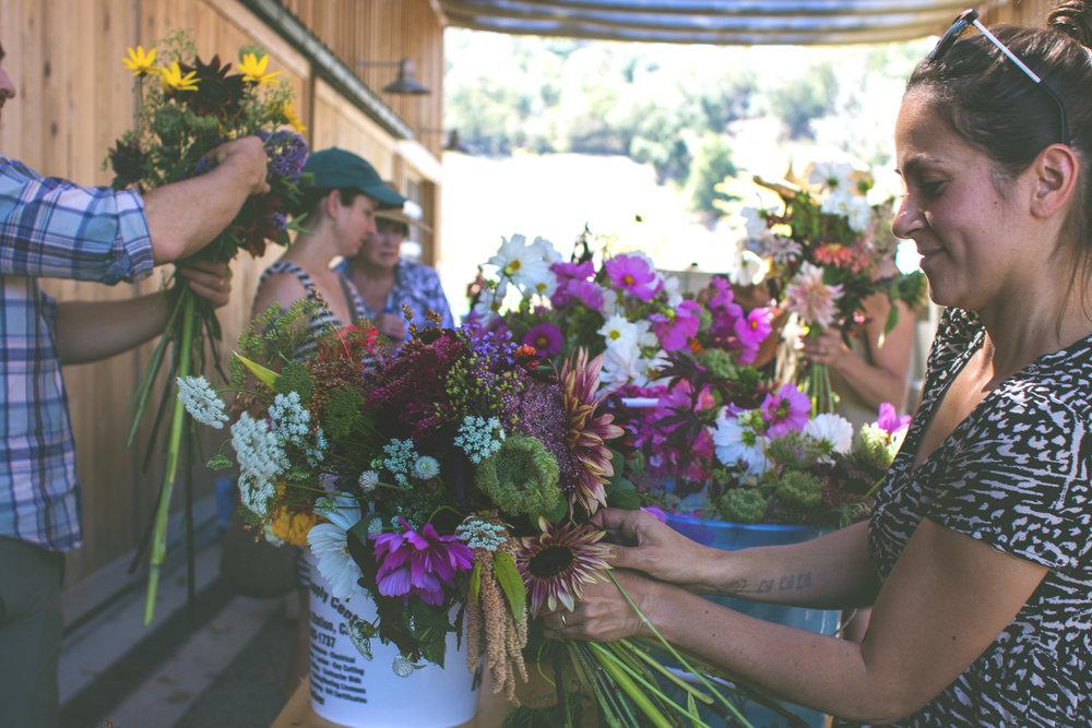 FlowerFestival (35 of 97) (2).jpg