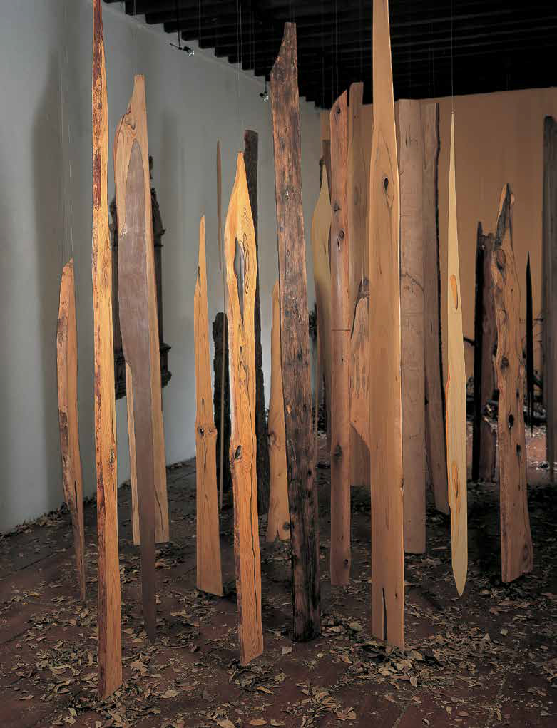 Remains of Ajusco, 2011, 70 wood planks, variable dimensions, installation