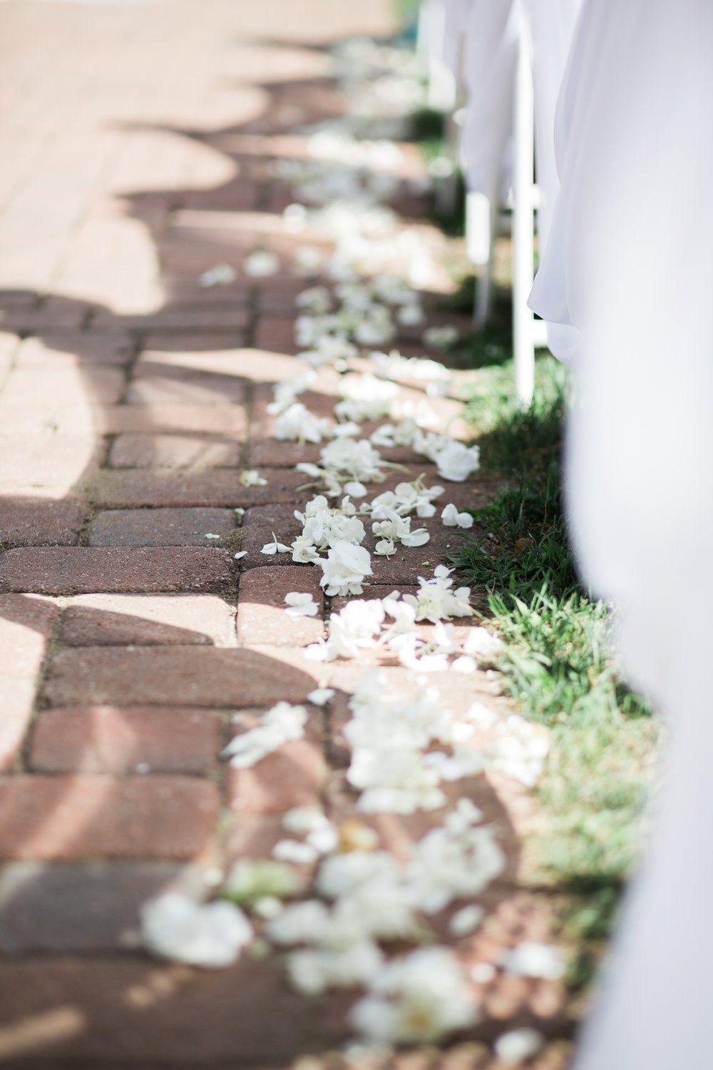 Katelyn_Wollet_Photography_Ann_Arbor_Wedding-62.jpg
