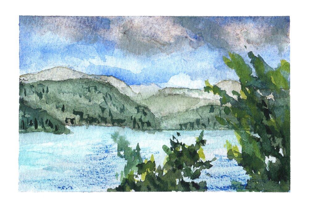 Saltspring View