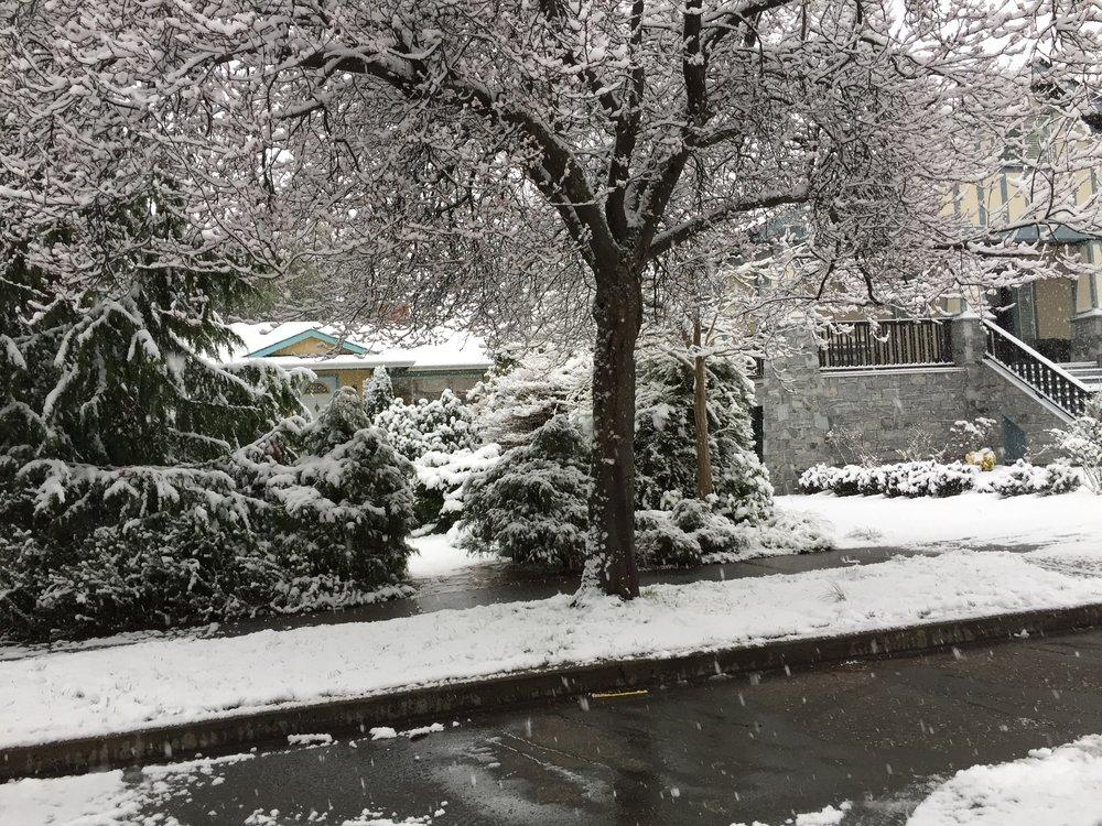 February 21, 2018 - Victoria BC