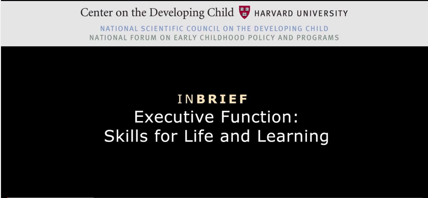 Click on this link to learn about the development of executive functioning skills.