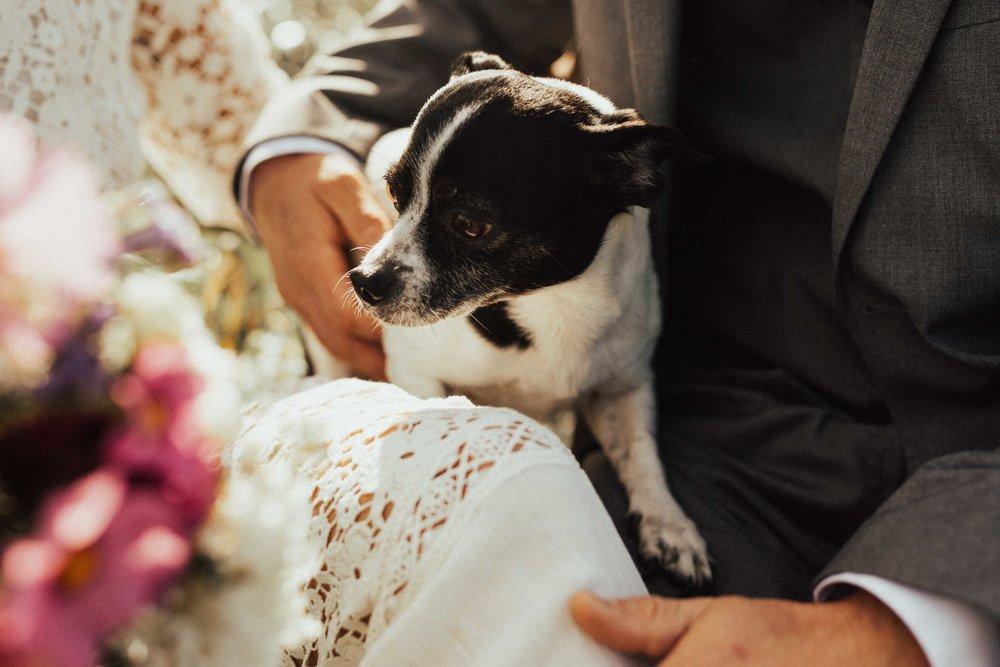 Marcella Laine Photo Intimate Coastal Wedding_1084.jpg