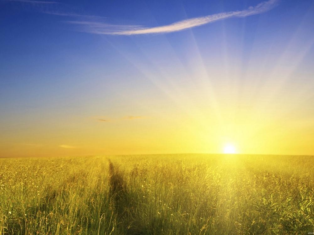 sun free.jpg
