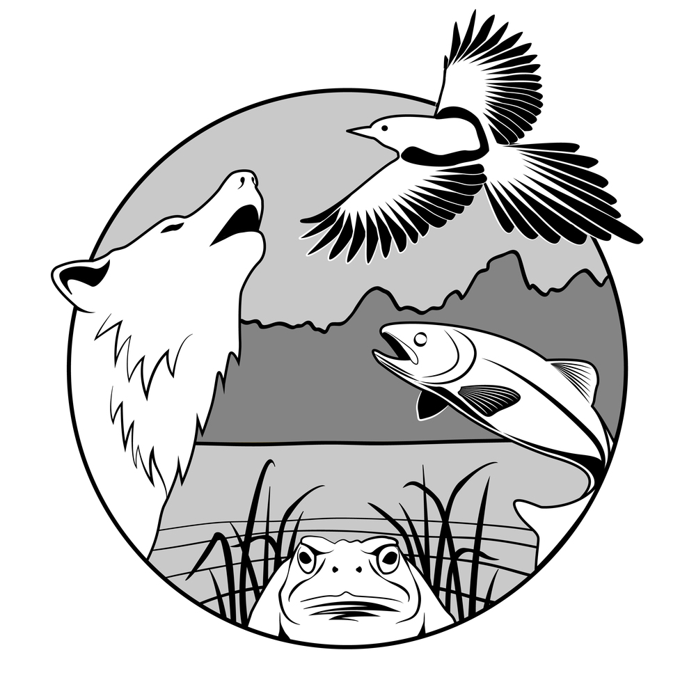 logo_IG-1.jpg