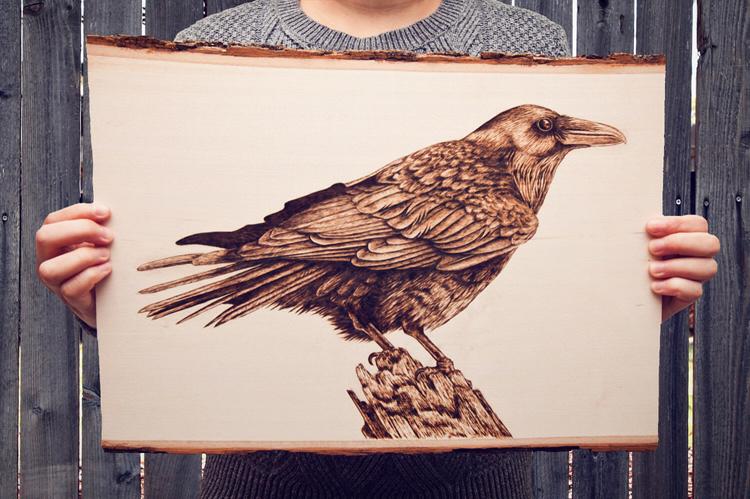 raven small.JPG