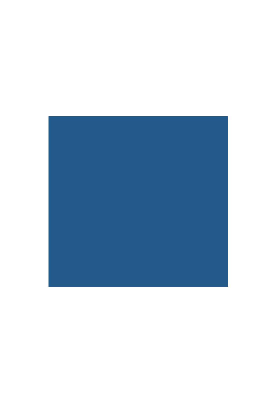 mariposa1.png