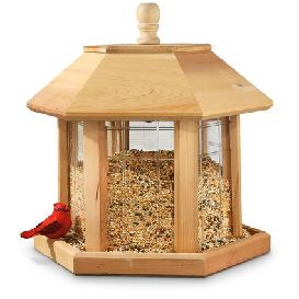 Bird Feeder 13
