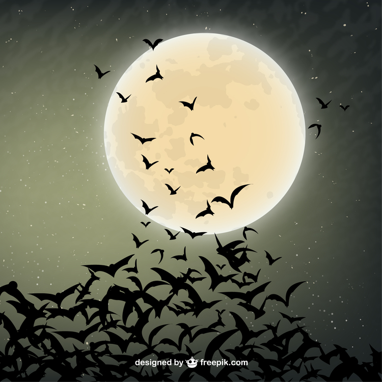 Bats in flight, courtesy of Freepik.com