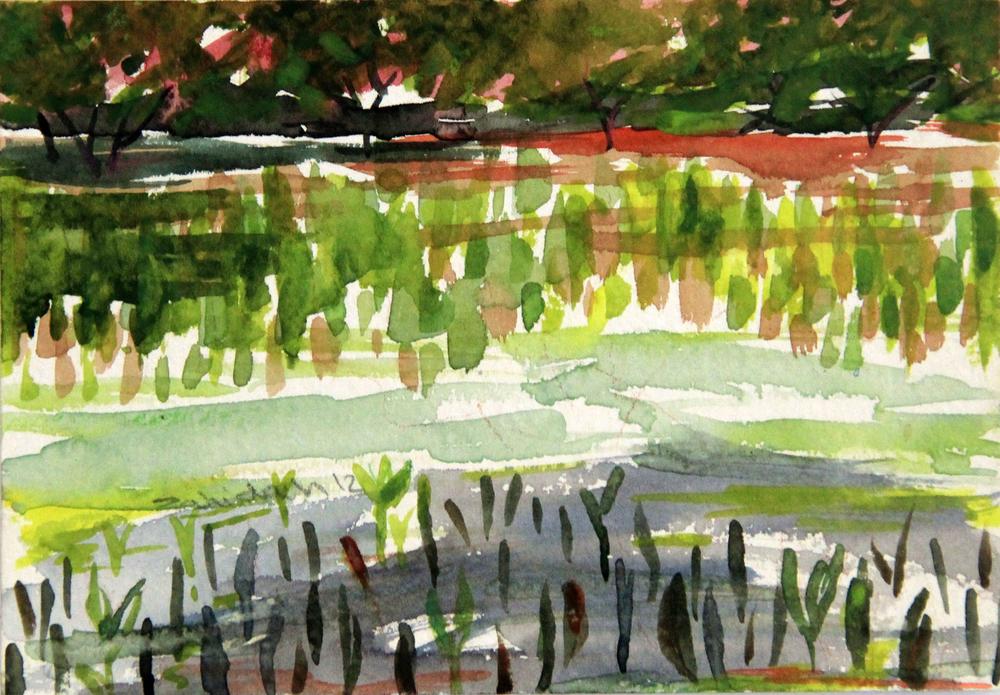 Mangroves_From_The_Water_35_Zahidah_Zeytoun_Showcase.jpg.jpg