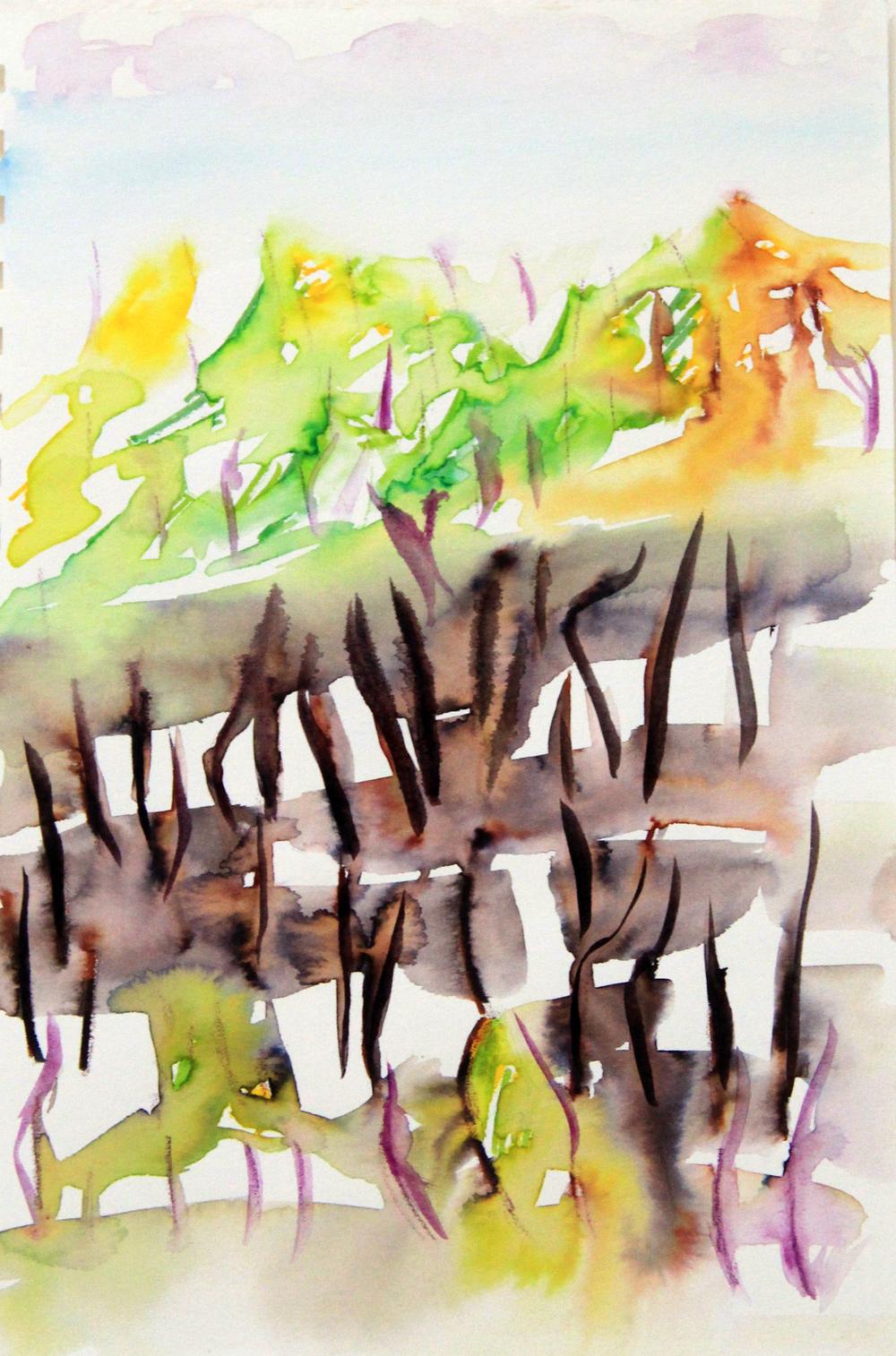 Mangroves_From_The_Water_74_Zahidah_Zeytoun_Showcase.jpg.jpg