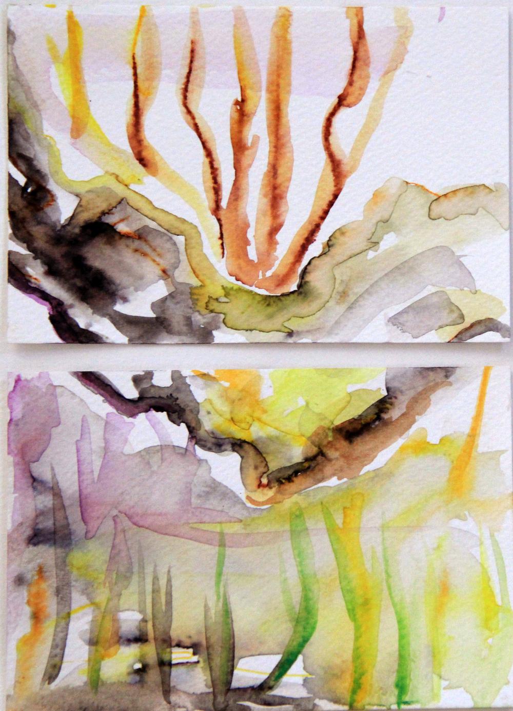 Mangroves_From_The_Water_119_Zahidah_Zeytoun_Showcase.jpg.jpg