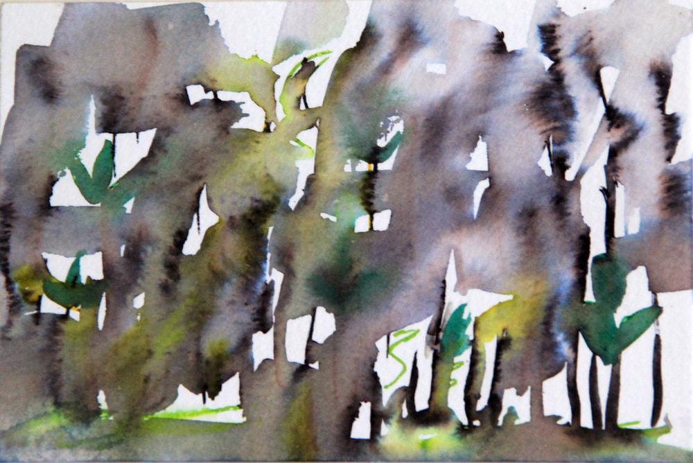 Mangroves_From_The_Water_148_Zahidah_Zeytoun_Showcase.jpg.jpg