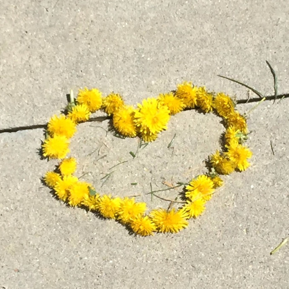 While walking in his neighborhood my twinflame, Frankie, found this treasure someone left for other to enjoy! - Boulder, CO April 2015