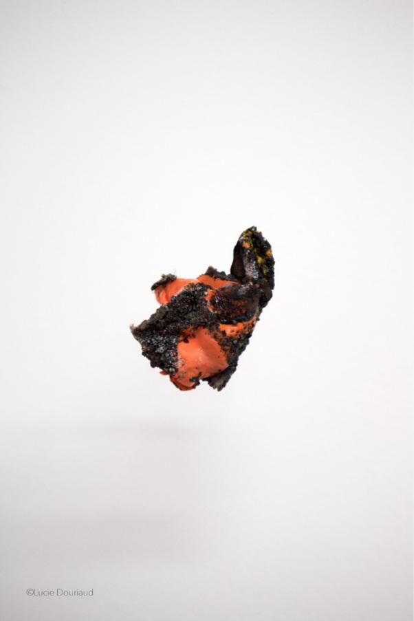 Lucie Douriaud & Élise Roche - Nos futurs est une invitation au voyage dans le ventre de la Terre. Dans une veine post-minimaliste, Lucie Douriaud interroge ce qu'il y a de plus dense pour comprendre le secret de la matière. En manipulant les éléments, l'artiste est à la recherche d'une vérité profonde. Issue d'une société hyper digitalisée et dématérialisée, elle tente de se confronter aux corps que la nature peut faire éclore. Au fil de ses explorations, elle découvre des formes naturelles et artificielles devenant alors les témoins temporels de notre monde. Pour saisir leurs essences, l'artiste devient une archéologue du futur.Élise Roche