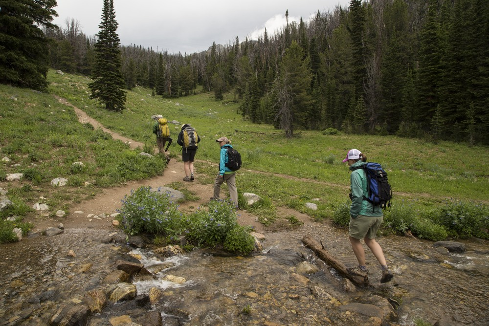 Montana State University students hiking to the Lee Metcalf Wilderness Area near Big Sky, MT