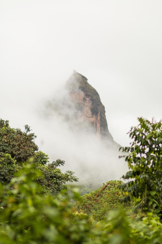 ethiopia-9452.JPG
