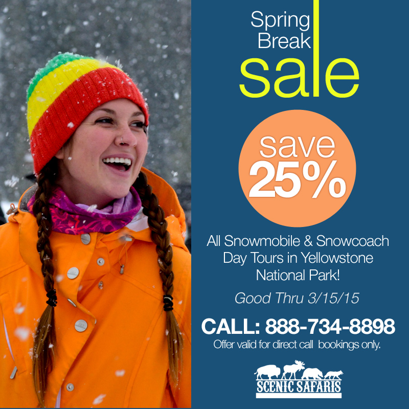 Yellowstone Tour Spring Break Special