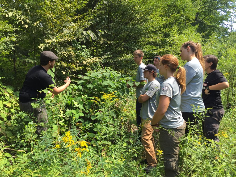 CRISP Campground Steward Intern, Evan Sweeney (left), with the Excelsior Conservation Corps during their third hitch last week in the Beaverkill.
